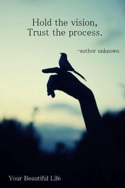 hold your vision- trust the process